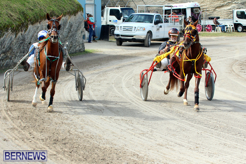 Remembrance-Day-Harness-Racing-Bermuda-Nov-11-2016-12