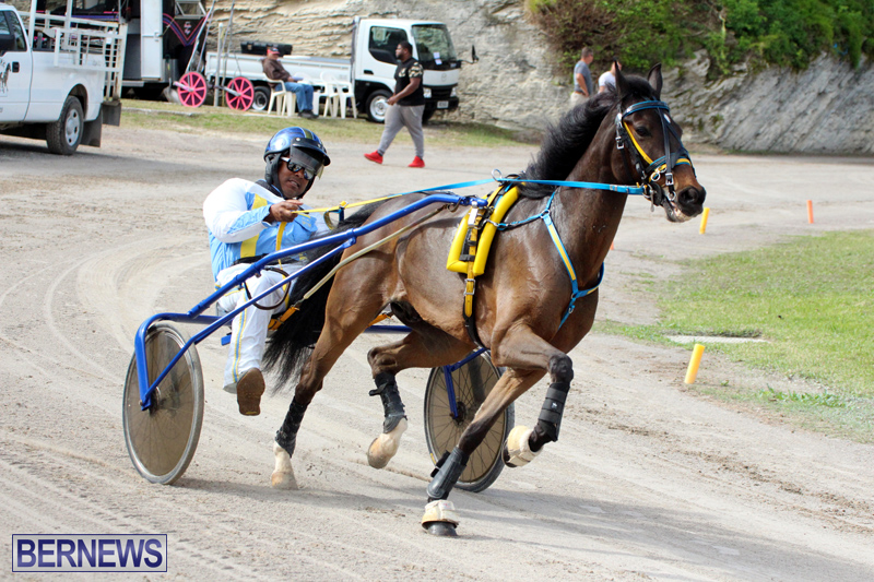Remembrance-Day-Harness-Racing-Bermuda-Nov-11-2016-13