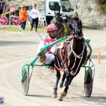 Remembrance Day Harness Racing Bermuda Nov 11 2016 (17)