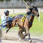 Remembrance Day Harness Racing Bermuda Nov 11 2016 (18)