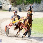 Remembrance Day Harness Racing Bermuda Nov 11 2016 (19)