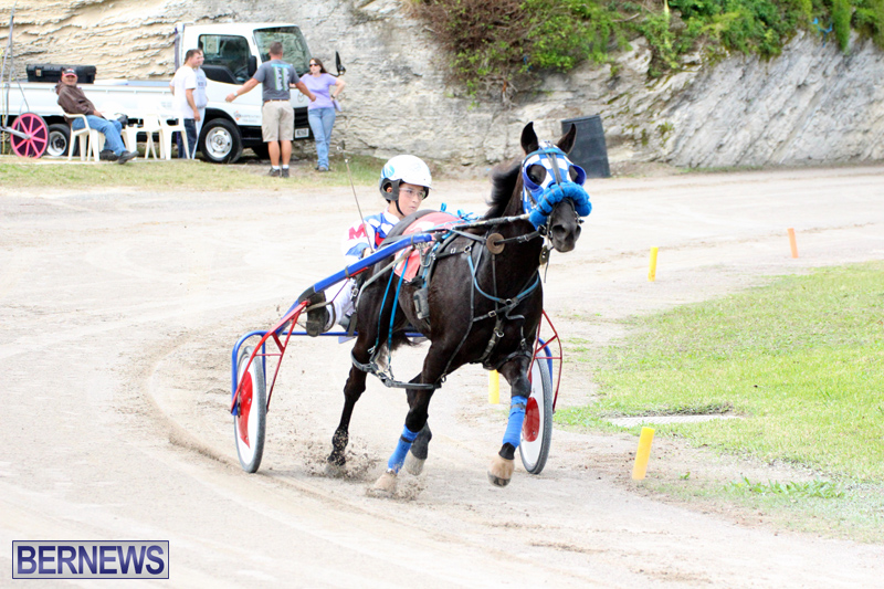 Remembrance-Day-Harness-Racing-Bermuda-Nov-11-2016-2
