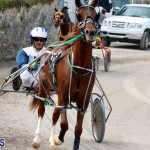 Remembrance Day Harness Racing Bermuda Nov 11 2016 (4)