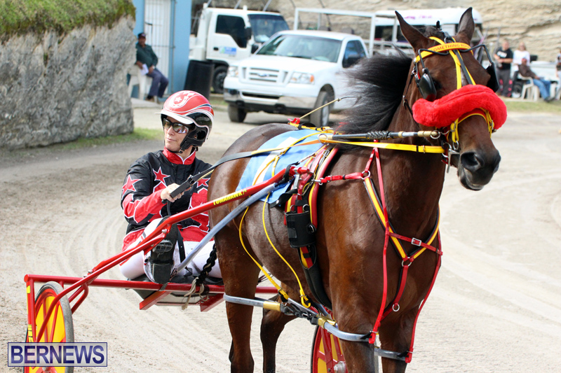 Remembrance-Day-Harness-Racing-Bermuda-Nov-11-2016-7