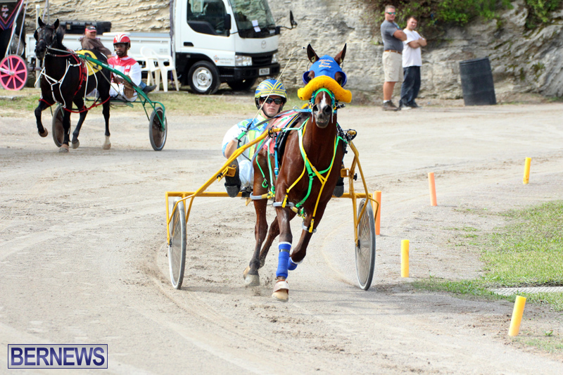 Remembrance-Day-Harness-Racing-Bermuda-Nov-11-2016-9
