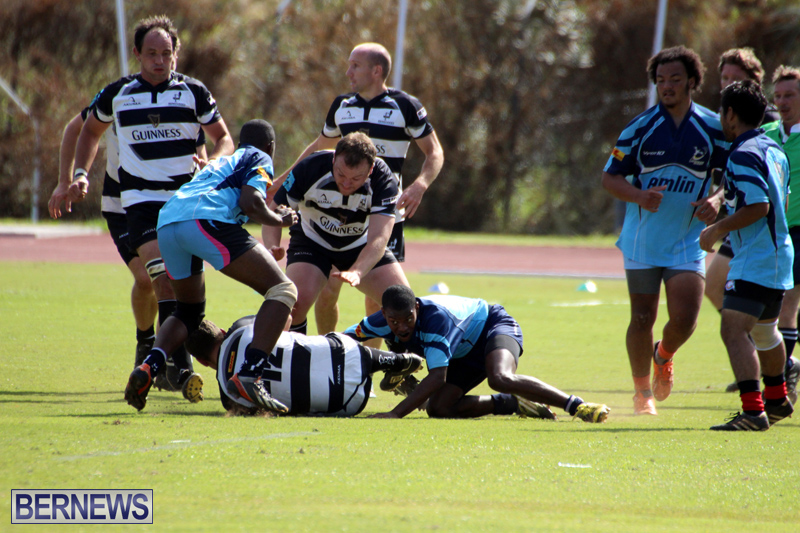 Renegades-Founders-Day-Rugby-Oct-30-2016-6