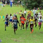Run Bermuda Nov 2016 (1)