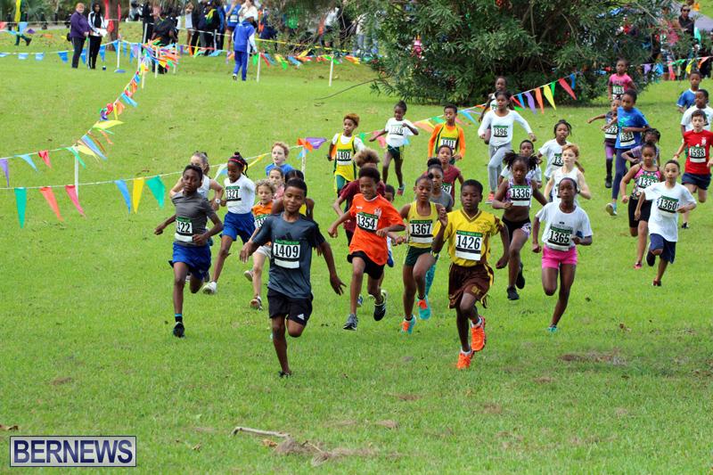 Run-Bermuda-Nov-2016-1