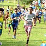 Run Bermuda Nov 2016 (10)