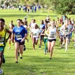 Run Bermuda Nov 2016 (11)