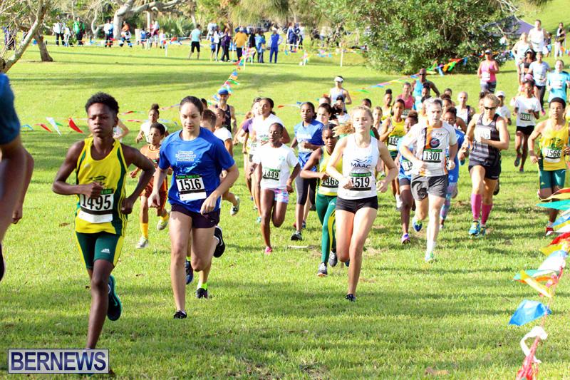 Run-Bermuda-Nov-2016-11