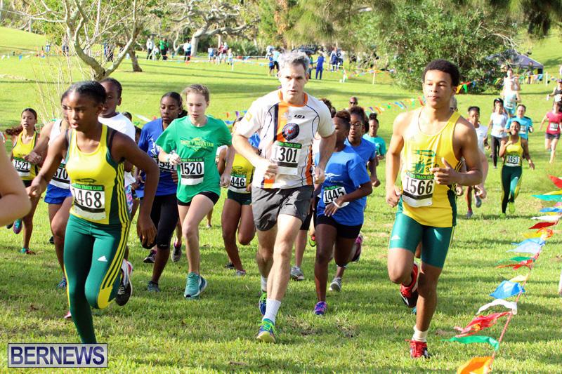 Run-Bermuda-Nov-2016-13