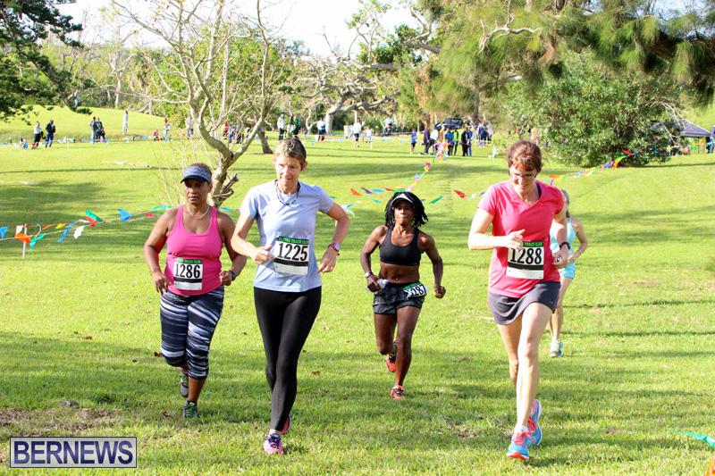 Run-Bermuda-Nov-2016-17