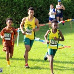 Run Bermuda Nov 2016 (19)