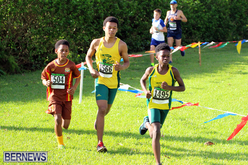 Run-Bermuda-Nov-2016-19