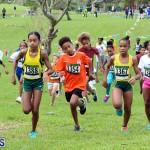 Run Bermuda Nov 2016 (3)