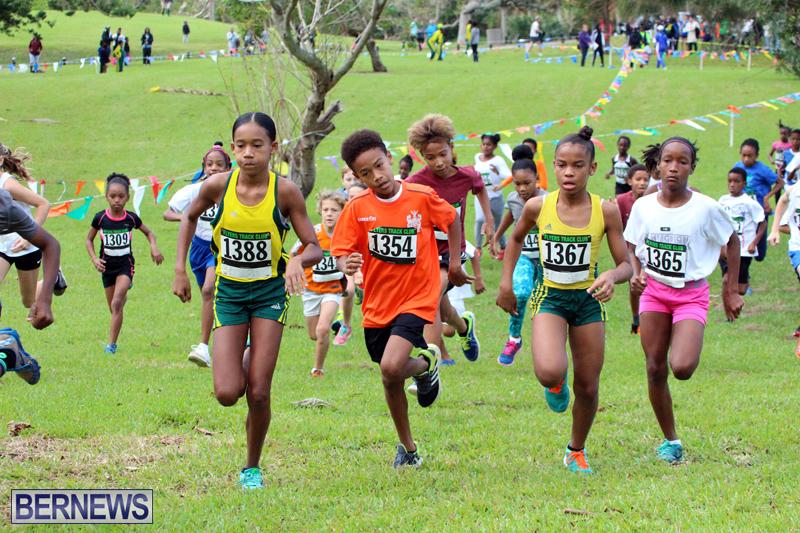 Run-Bermuda-Nov-2016-3