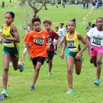 Run Bermuda Nov 2016 (4)