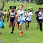 Run Bermuda Nov 2016 (5)