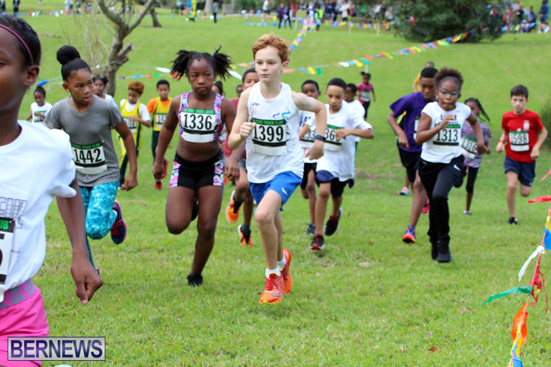 Run-Bermuda-Nov-2016-5