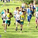Run Bermuda Nov 2016 (9)