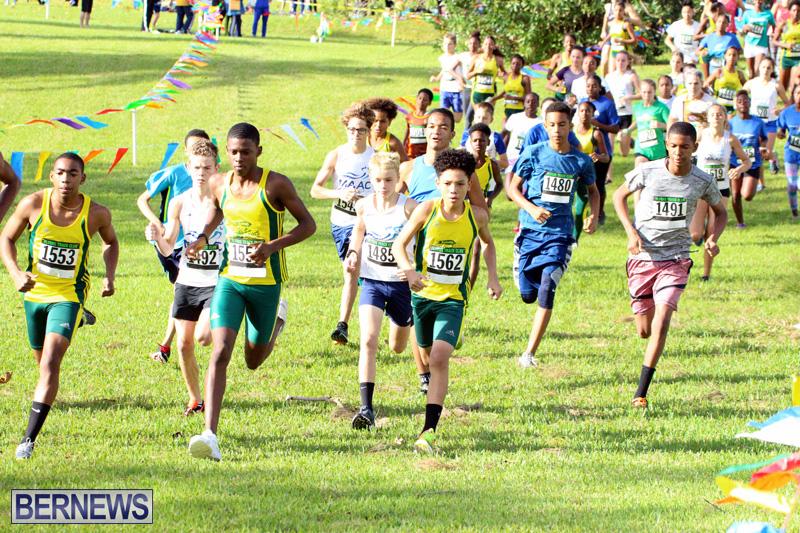 Run-Bermuda-Nov-2016-9