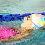 BASA Christmas Swimming Camp Bermuda Dec 22 2016 (3)