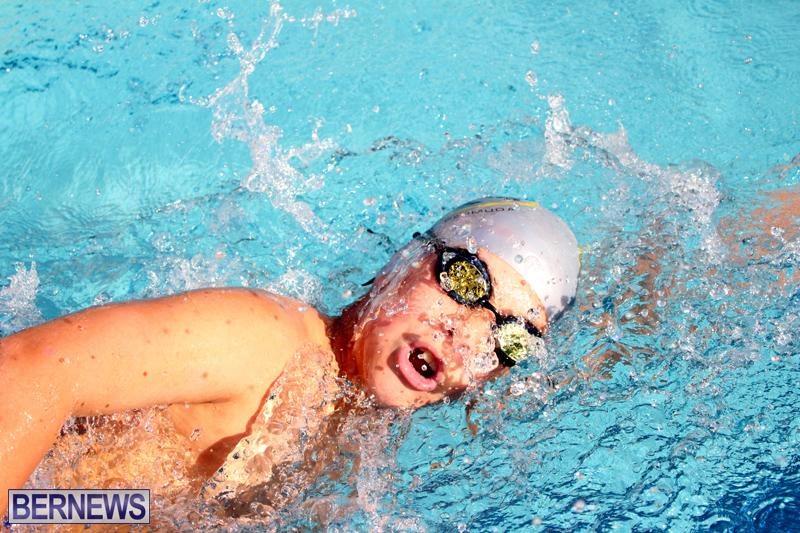 BASA-Winter-Swim-Meet-Bermuda-Dec-4-2016-12