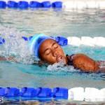 BASA Winter Swim Meet Bermuda Dec 4 2016 (3)