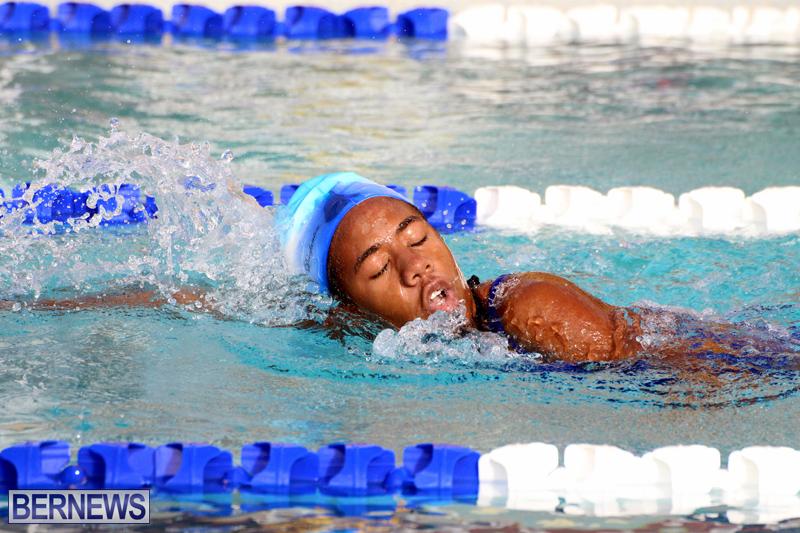 BASA-Winter-Swim-Meet-Bermuda-Dec-4-2016-3