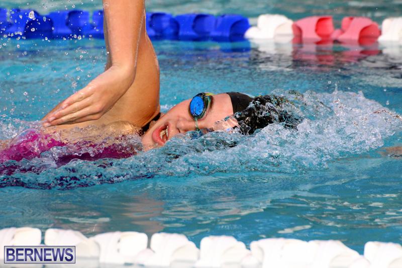 BASA-Winter-Swim-Meet-Bermuda-Dec-4-2016-4