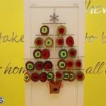 Bermuda Christmas wreaths in mall 2016 (24)