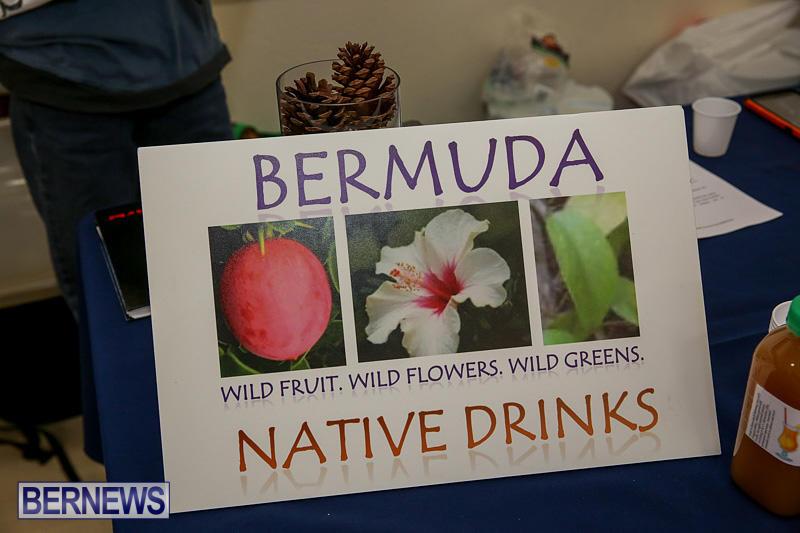 Home-Grown-Alternatives-Market-Bermuda-December-10-2016-140