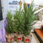 Home Grown Alternatives Market Bermuda, December 10 2016-166
