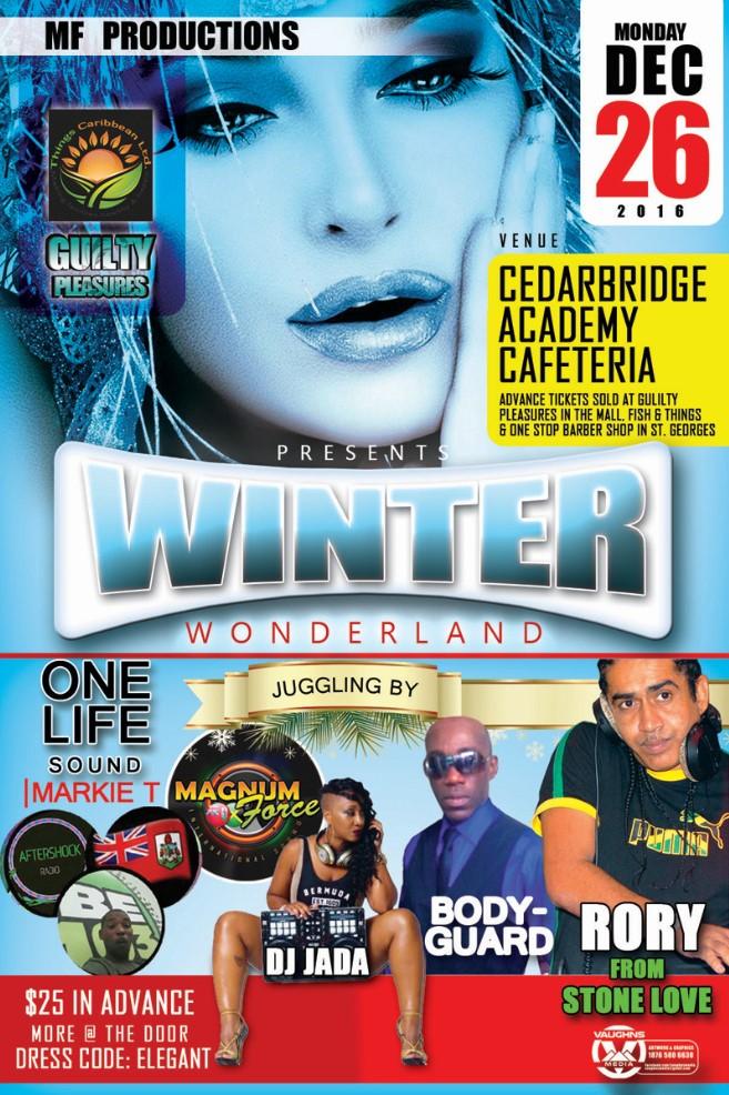 Winter Wonderland Bermuda December 2016