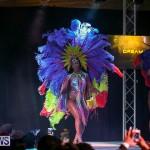 Bermuda Heroes Weekend Band Launch, January 8 2017-100