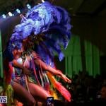Bermuda Heroes Weekend Band Launch, January 8 2017-105