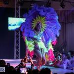 Bermuda Heroes Weekend Band Launch, January 8 2017-110
