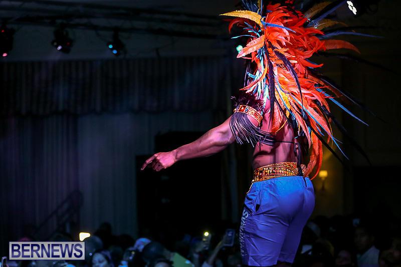 Bermuda-Heroes-Weekend-Band-Launch-January-8-2017-136