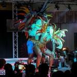Bermuda Heroes Weekend Band Launch, January 8 2017-138