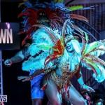 Bermuda Heroes Weekend Band Launch, January 8 2017-139