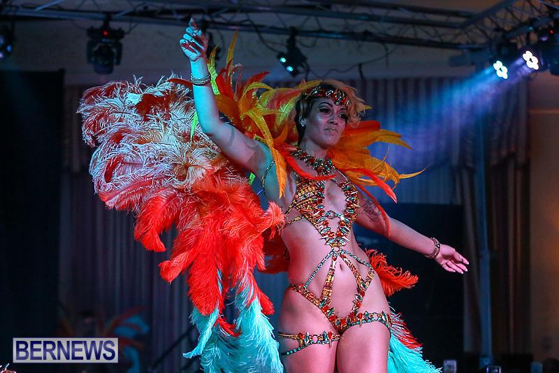 Bermuda-Heroes-Weekend-Band-Launch-January-8-2017-142