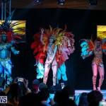 Bermuda Heroes Weekend Band Launch, January 8 2017-151