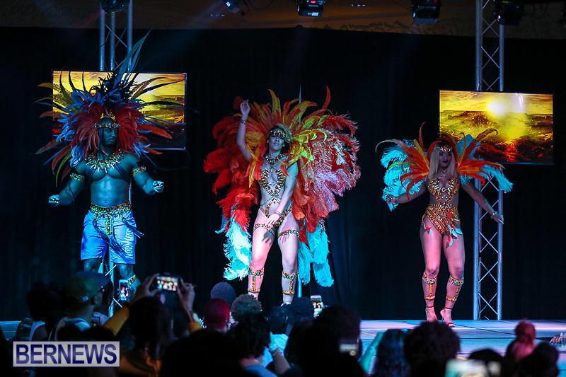 Bermuda-Heroes-Weekend-Band-Launch-January-8-2017-151