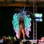 Bermuda Heroes Weekend Band Launch, January 8 2017-167