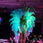 Bermuda Heroes Weekend Band Launch, January 8 2017-169