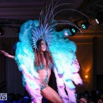 Bermuda Heroes Weekend Band Launch, January 8 2017-173