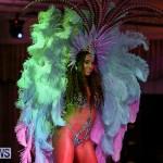 Bermuda Heroes Weekend Band Launch, January 8 2017-174