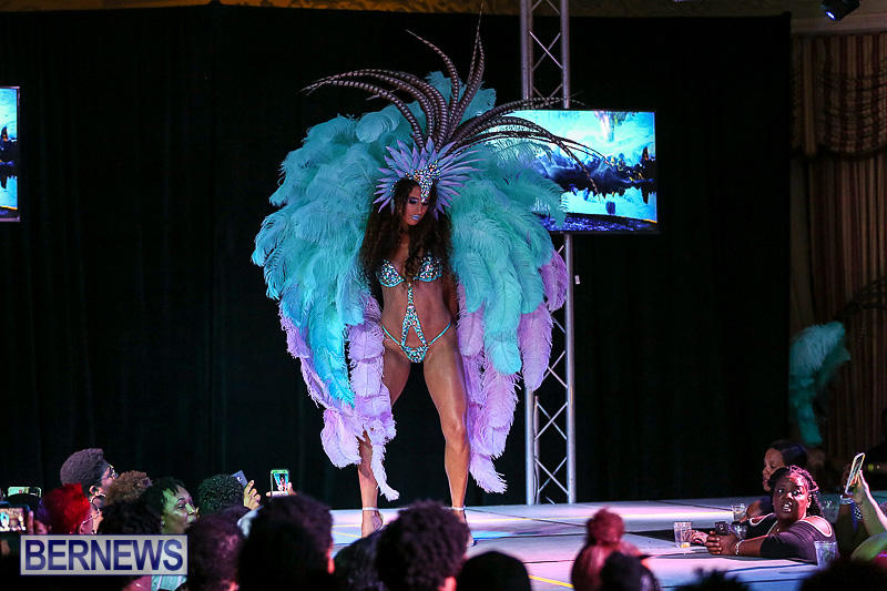 Bermuda-Heroes-Weekend-Band-Launch-January-8-2017-177