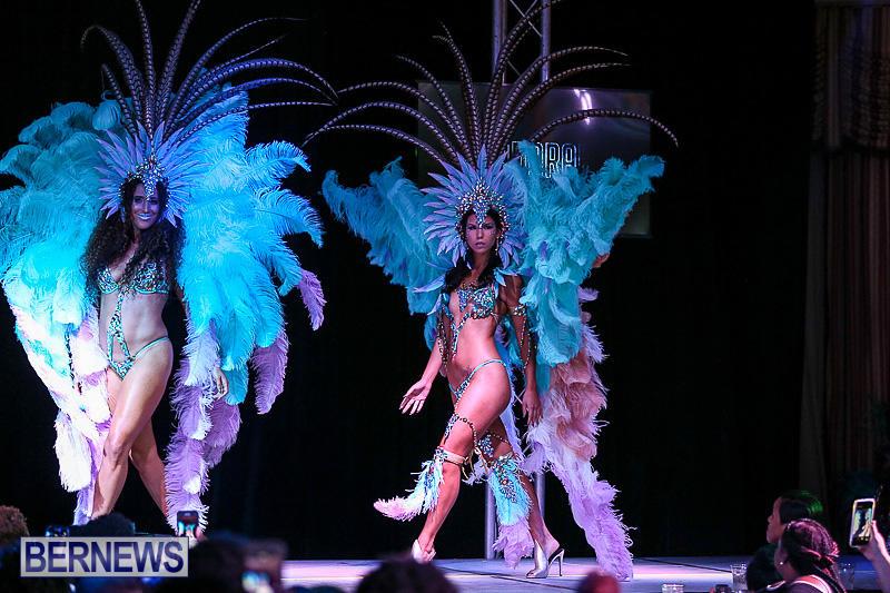 Bermuda-Heroes-Weekend-Band-Launch-January-8-2017-178